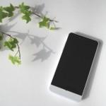 Zenfone2のアクセサリを注文し忘れていませんか?