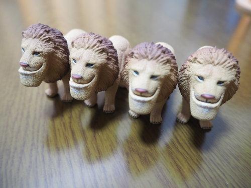 ライオン4つ